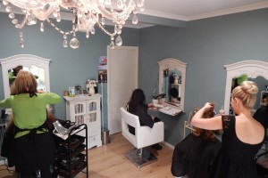 salon-feature-2